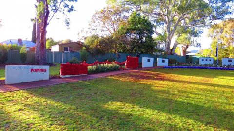 The Gums War Memorial Garden decorated with poppies