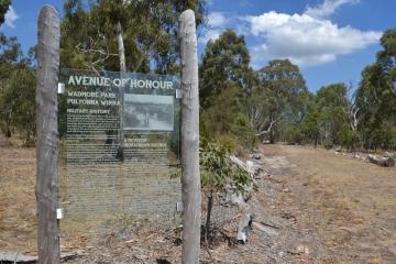 Wadmore Park Avenue of Honour, Athelstone, South Australia